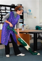 * Panztel-office-cleaner.jpg